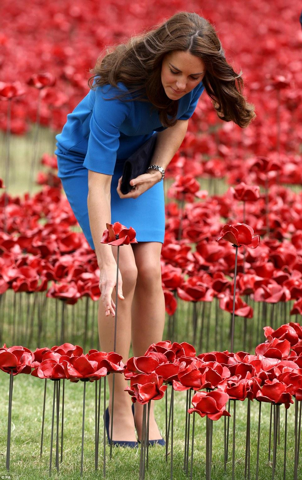 poppy12.jpg